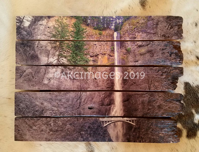 """Multnomah Falls - Spring Collection, Focal Color #1 ©AKCImages.com Medium Horizontal Boutique  17""""X 12"""" $75 plus Shipping/delivery"""