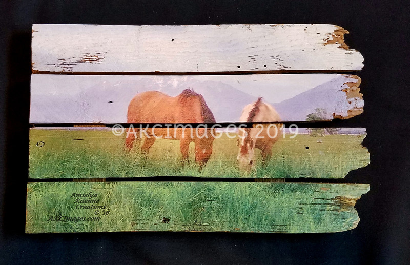 """'Pals at the Peaks' #2 ©AKCImages.com Small Horizontal Boutique  15""""X 10"""" $55 SOLD Available for Re-Order"""