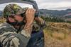 Bowhunting Roosevelt elk