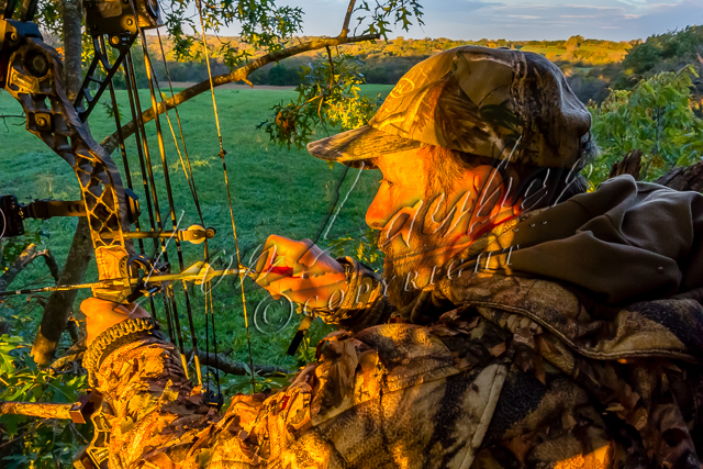 Bowhunting whitetials, bowhunting for white-tailed deer, bowhunting deer