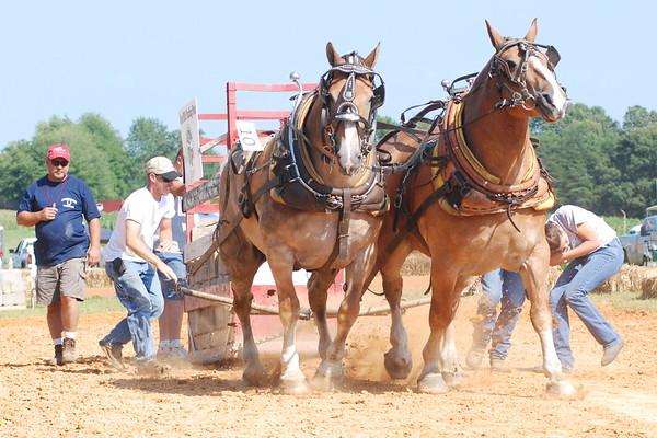 2009 Horse Pull