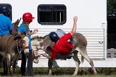 20110904_Donkey_Ball_019