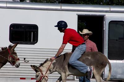 20110904_Donkey_Ball_023