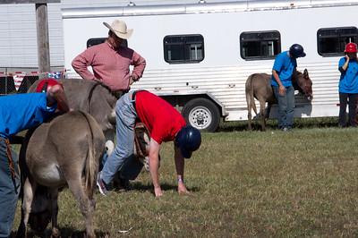 20110904_Donkey_Ball_027