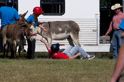 20110904_Donkey_Ball_020