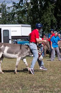 20110904_Donkey_Ball_032