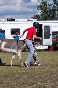 20110904_Donkey_Ball_031