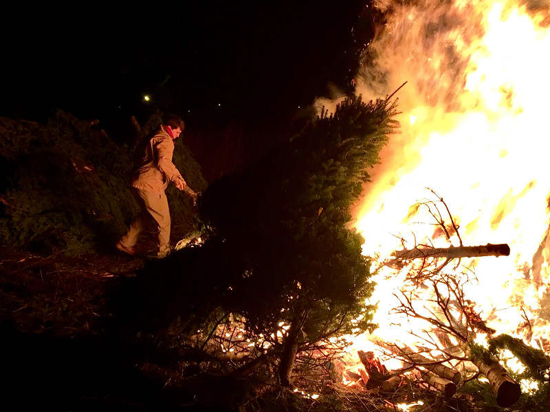 Dan Caulfield of Billerica prepares to heft a tree onto the blazing pile. Photo by Mary Leach