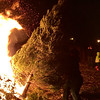 A gigantic pine adds fuel to the fire during the Christmas tree burn held by Boy Scouts Troop 11 at Griggs Farm on Jan. 14. Photo by Mary Leach
