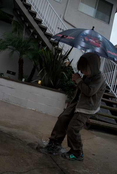 REDONDO BEACH , CALIFORNIA — William splashes in the puddles in the first decent rain of 2009. Photo taken by Tom Sorensen February 5th, 2009.