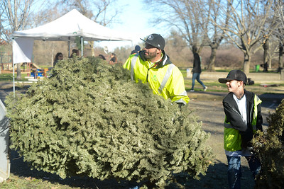 Recology's Fred Costilla, left, with Fred Costilla III, 10, right, work with Boy Scouts from Troop 2 work to recycle Christmas trees Saturday, Jan. 14, 2017, in Chico, California. (Dan Reidel -- Enterprise-Record)