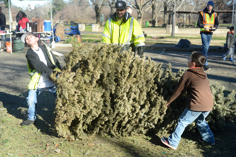 Left to right, Fred Costilla III, 10, left, struggles to move a - Boy Scouts Recycle Trees - MNG-Chico
