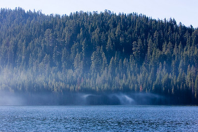 Mist on the lake in the morning.