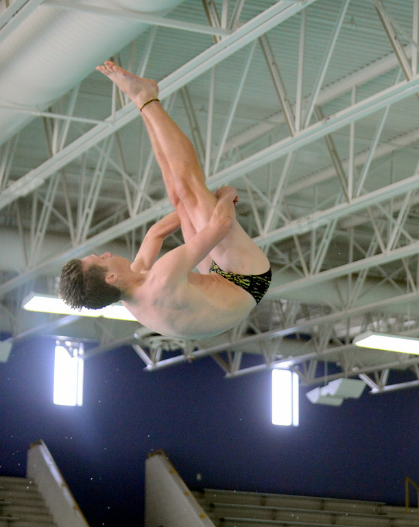 . Thompson Valley\'s Logan Brian hits his pike on his way to winning the diving title and qualifying for state at the boys City Meet on Tuesday at the Mountain View Aquatic Center. (Mike Brohard/Loveland Reporter-Herald)