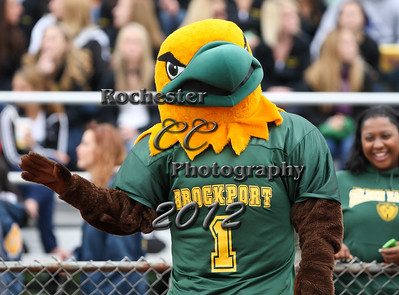 b91ddf65c ... Brockport Golden Eagles and the College of New Jersey Lions at Bob  Boozer Field. Photo  Christopher Cecere · Mascot