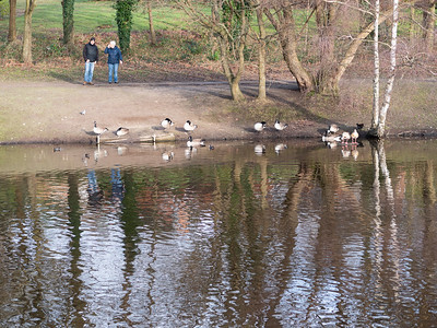 Families enjoying in South Hill Park lake
