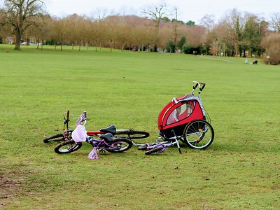 Cycles and buggies
