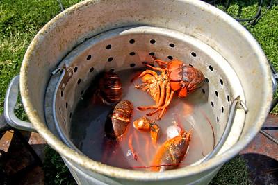 The 2019 Lobster Fest in Bradley Beach, NJ on 8/31/19. [DANIELLA HEMINGHAUS]
