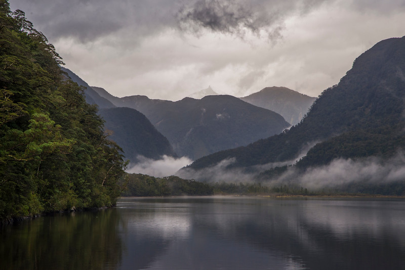 Rainy day head of Bradshaw Sound Fiordland