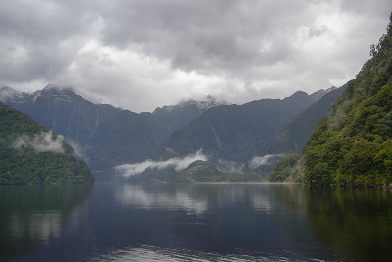 Heading into Bradshaw Sound Fiordland
