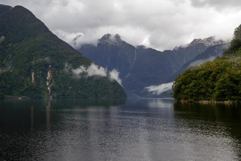 Bradshaw Sound Fiordland