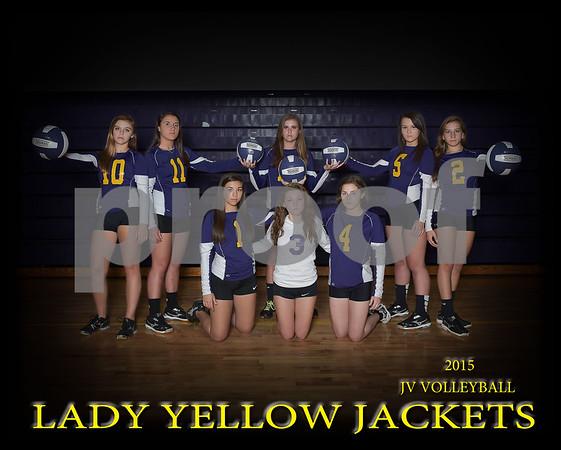 Branchville Volleyball Team pictures
