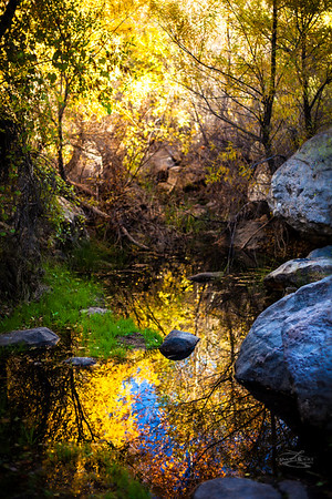 Charlebois Spring, Lost Dutchman Trail, Superstition Mountains.