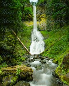 Pup Creek Waterfall II