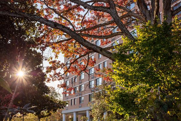 Wesley Housing - Culpepper Garden, Arlington VA
