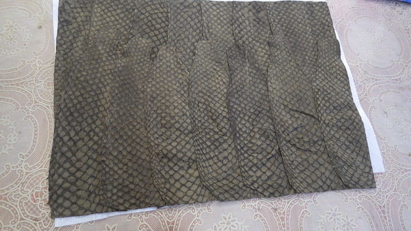 Piranha skin