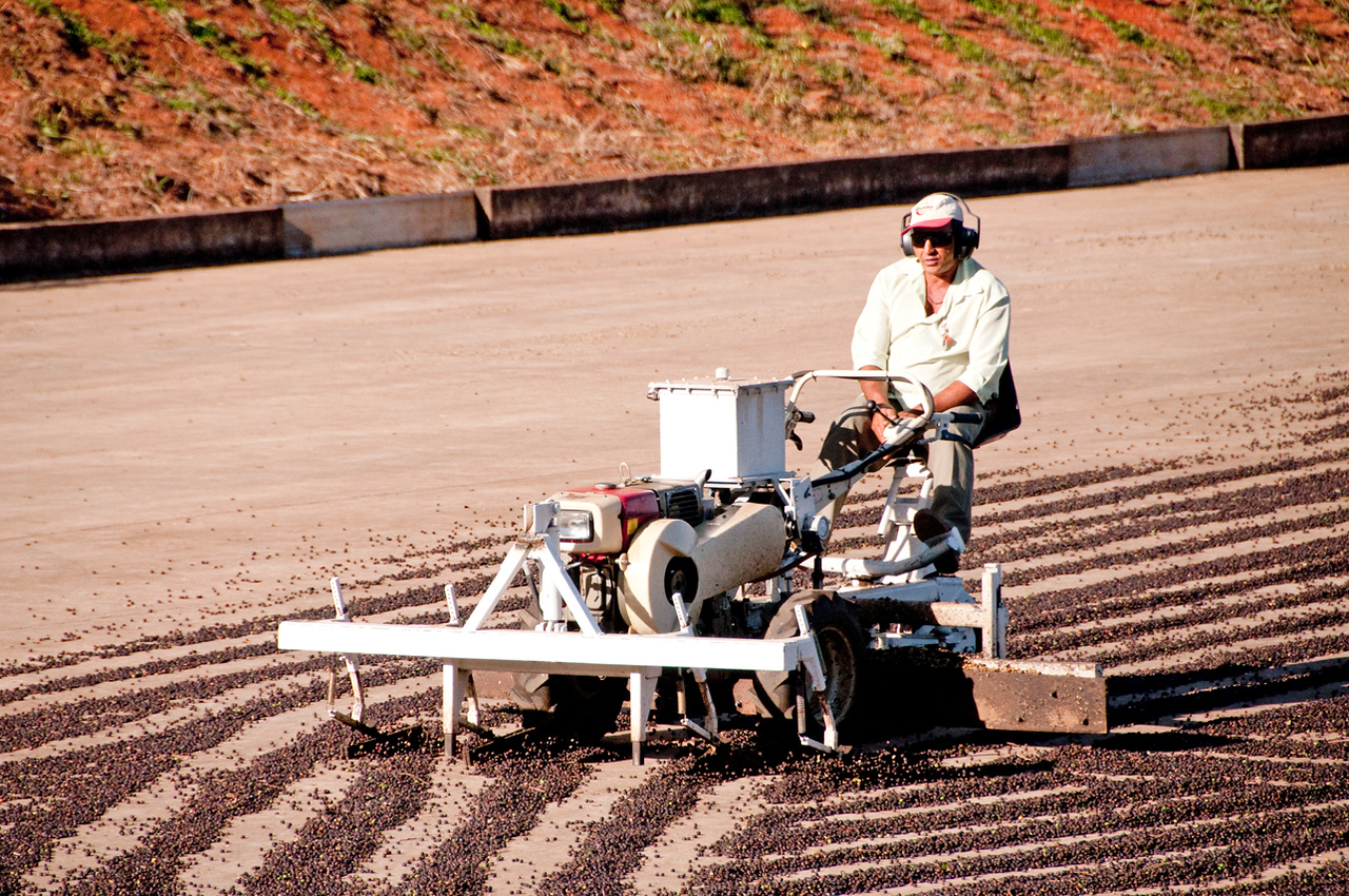 Rows are continuously turned over and reformed with this machine.....