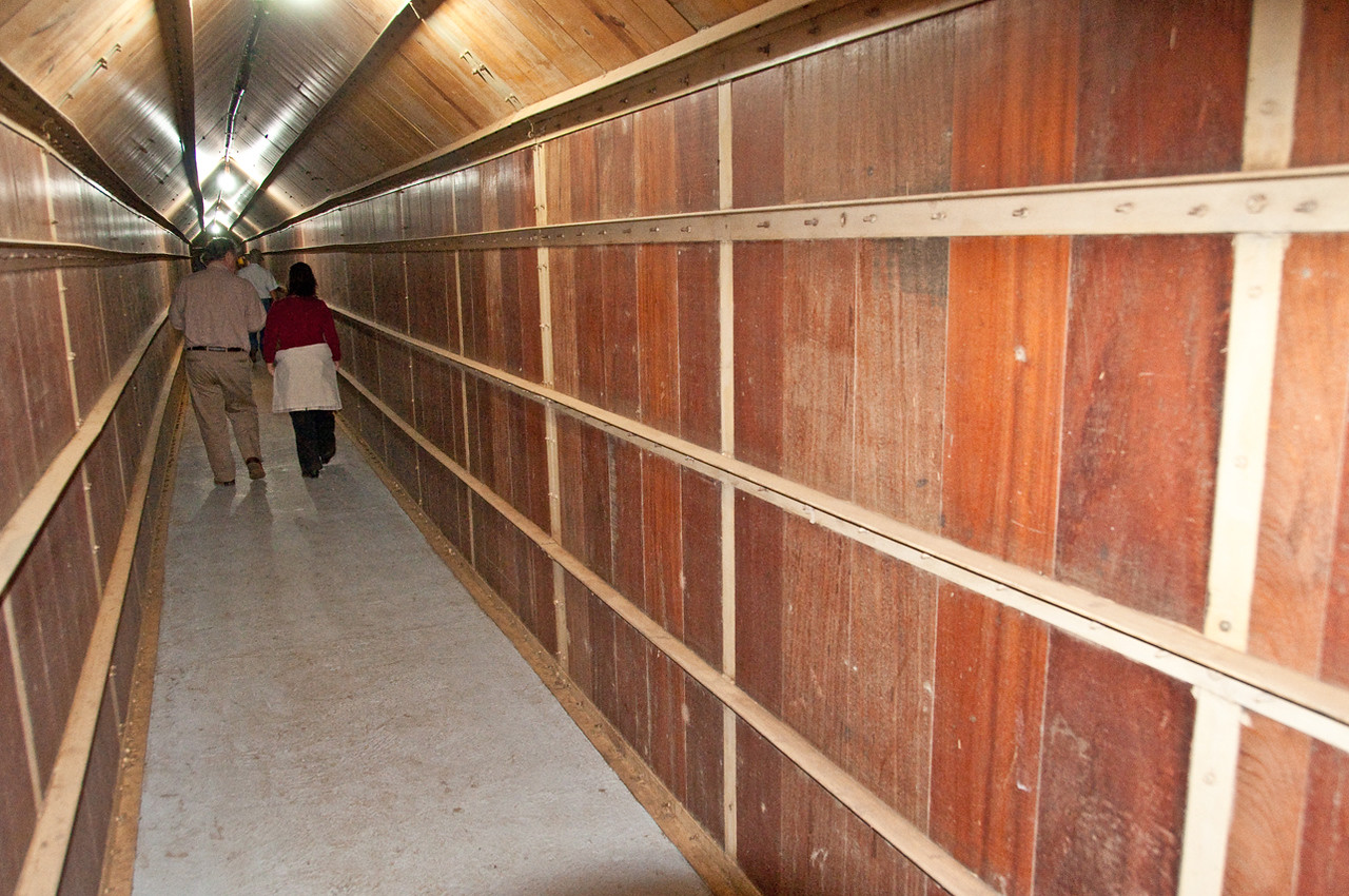 """We walk through tunnels below wooden bins containing dried coffees which are """"resting"""" over a period of 30 to 60 days....."""