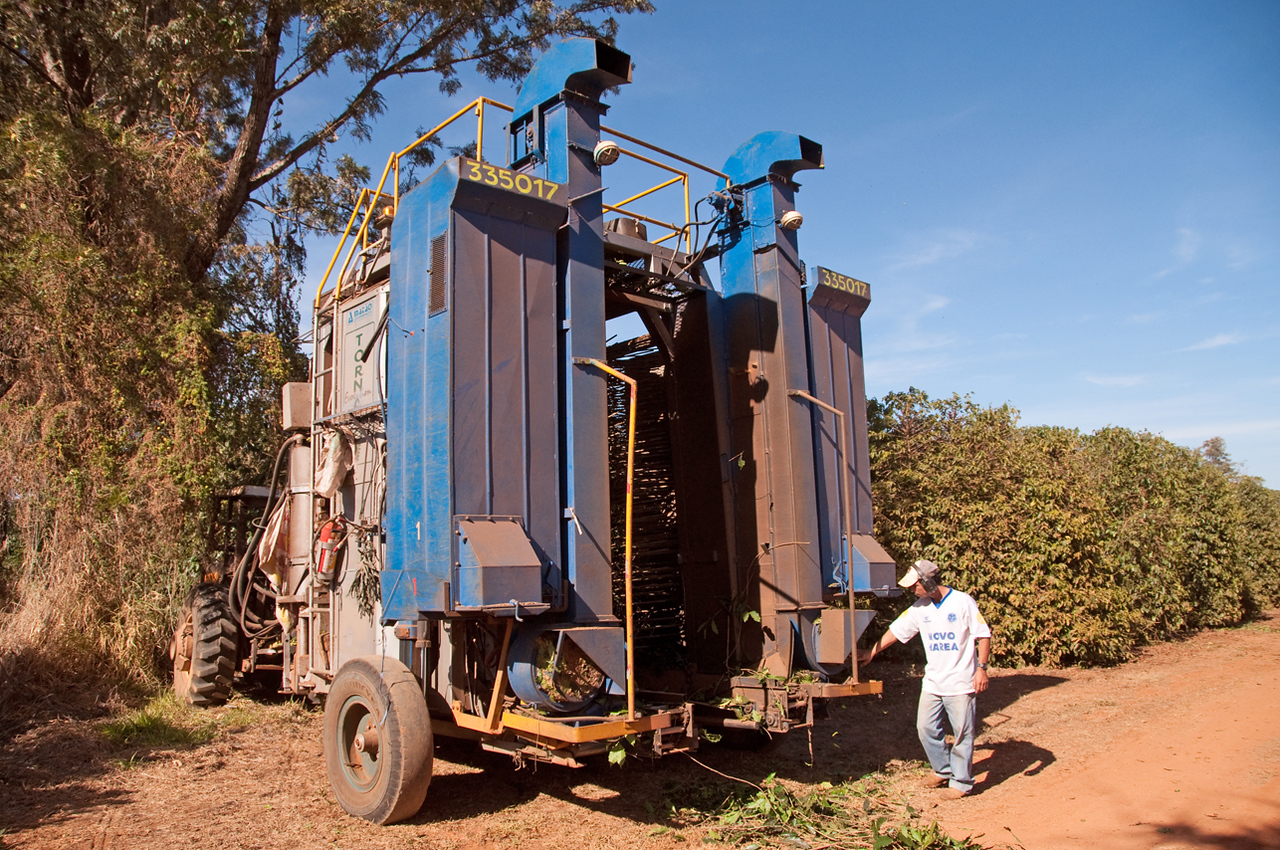 The harvester from the back.  Heavier cherries enter two collection containers on either side of two blowers which spew out leaves and twigs and machine passes over the coffee trees.