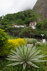 Tropical vegetation and a home on a hillside near Rio de Janiero, Brazil.