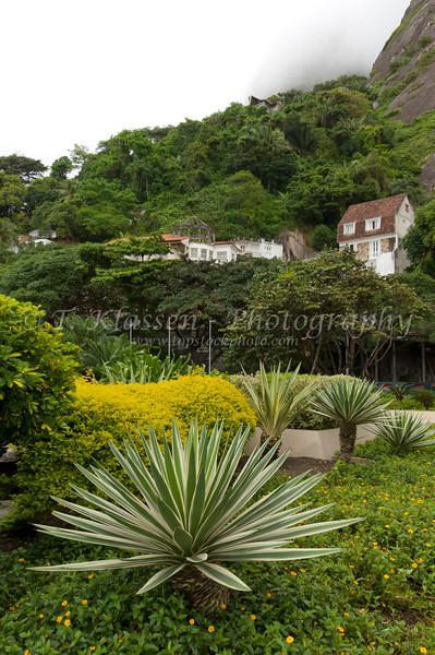 Tropical vegetation and a home on a hillside near Rio de Janiero, Brazil.