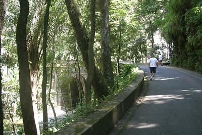 Tijuca Urban Forest Rio, De Janeiro