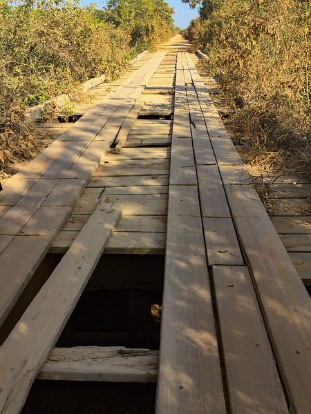 Bridge on the Transpantaneira