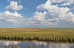 Looking Toward The Gulf Over The Wetland Prairie.