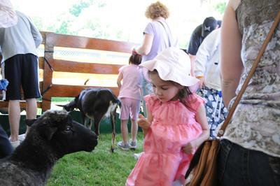 Petting Zoo_2009