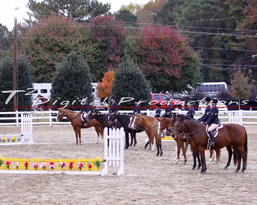 2013 November, Rolling Hills Saddle Club Horse Show