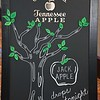 Tennessee Apple Launch 001