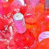 2019 Drink Pink Rose Festival 001