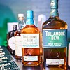 Tullamore DEW and Flogging Molly 014