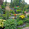 Perennial Garden of the Year