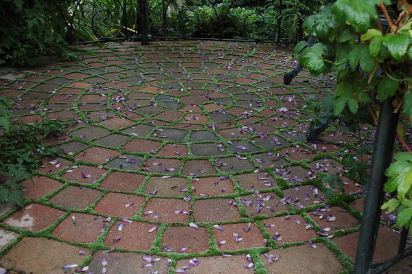 The floor of the gazebo with moss lined cracks.