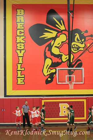 2017-03-03 Bees2 4th BkBall v Nordonia (3)