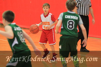 2017-03-03 Bees2 4th BkBall v Nordonia (24)