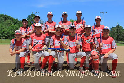 Bees Baseball 13U - 2016