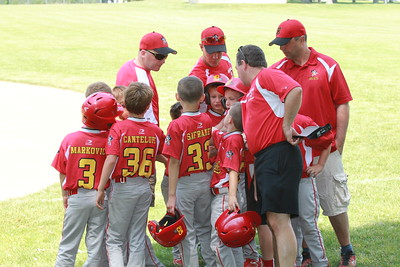 Bees Baseball 8U - 2015