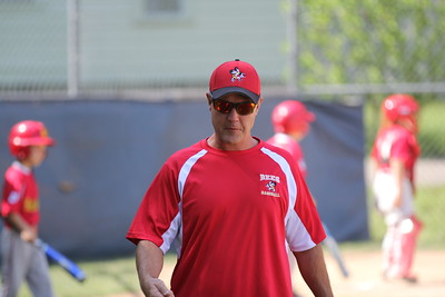 2015-06-07 Bees Baseball U8 vs Fairview 001